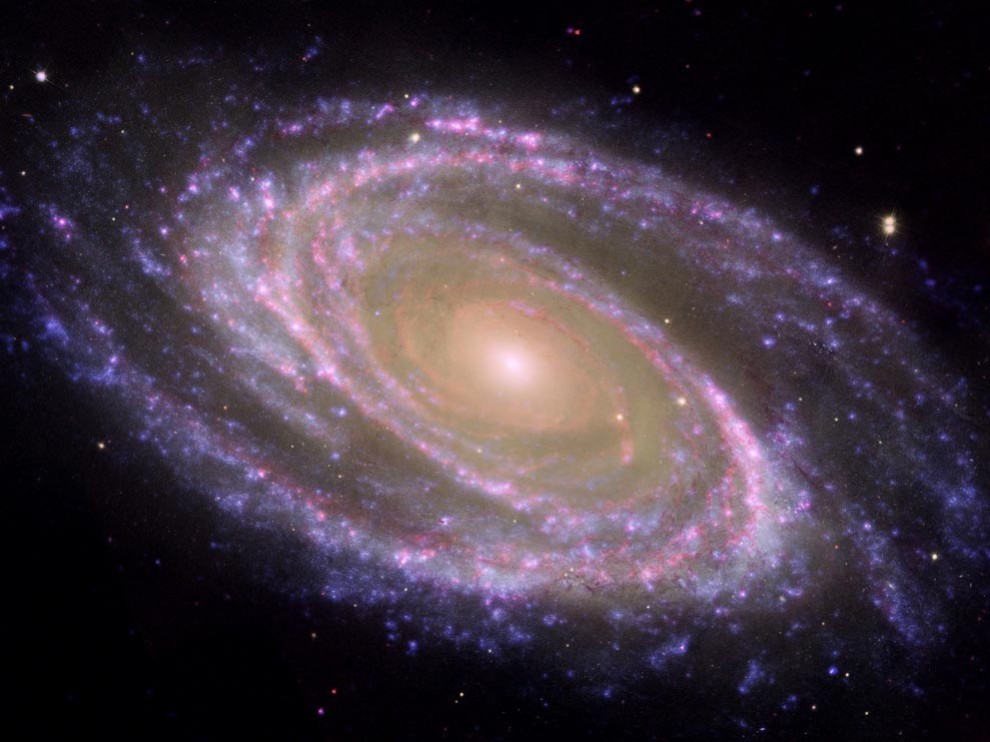EVERYTHING is dangerous by thunder